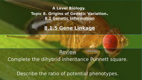 A Level Gene Linkage