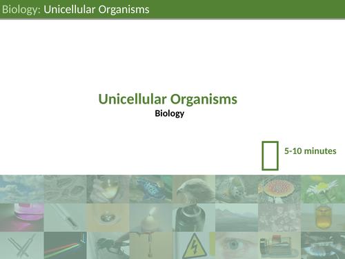 KS3 Science - Unicellular Organisms