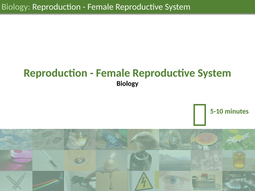 KS3 Science - The Female Reproductive System