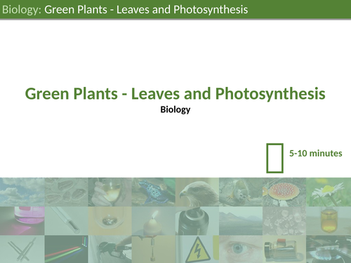 KS3 Science - Leaves and Photosynthesis