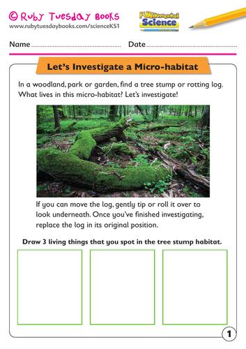 Let's investigate a micro-habitat