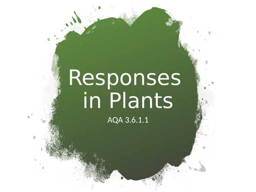 AQA A Level Biology -  Plant Responses