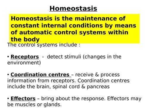 GCSE Biology - Kidneys and Homeostasis