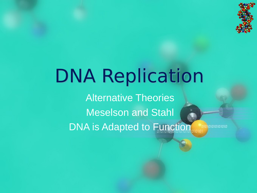 AQA A Level Biology - DNA Replication