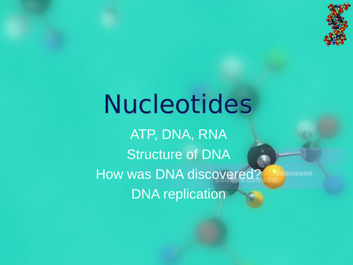 AQA A Level Biology - Nucleotides