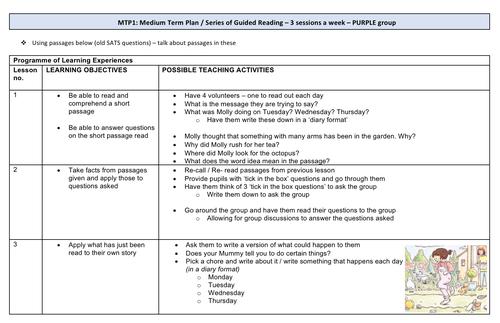 Guided Reading Medium Term Plan (PURPLE reading band)