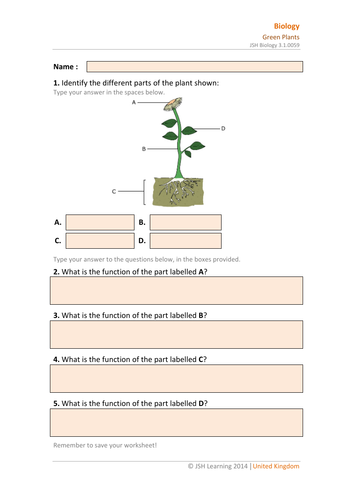 KS3 Science - Green Plants Interactive PDF