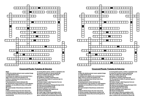 Selection & Evolution Crossword Puzzles (A-level Biology)