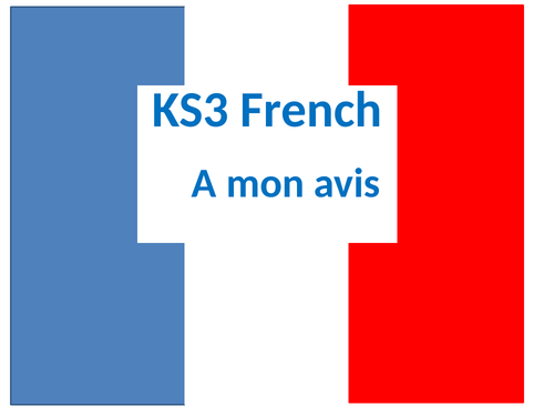 French Opinions lesson