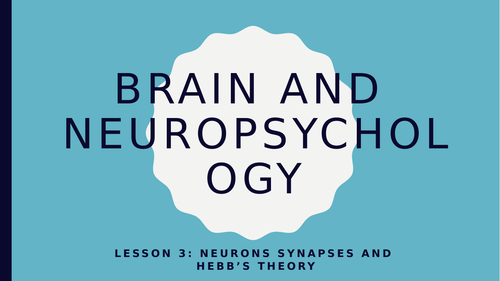 AQA GCSE Psychology (New Spec) Lesson 3/6-Neuropsyc-Neurons, Synapses and Hebb's Theory
