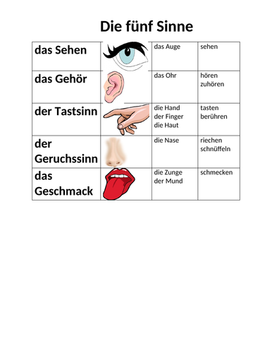 Fünf Sinne (Five Senses in German) Reference Sheet