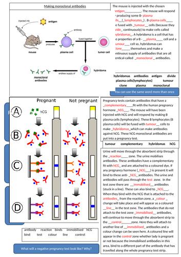 AQA 9-1 Monoclonal antibodies