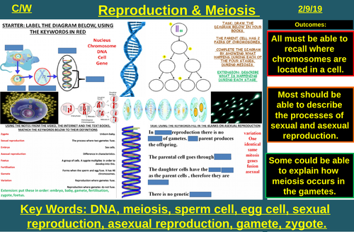 Sexual & Asexual Reproduction, DNA & Meiosis | AQA B2 4.6 | New Spec 9-1 (2018)