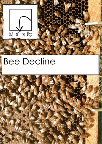 Bee Decline. Information and Worksheet