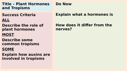 AQA GCSE Plant Tropisms and Auxins