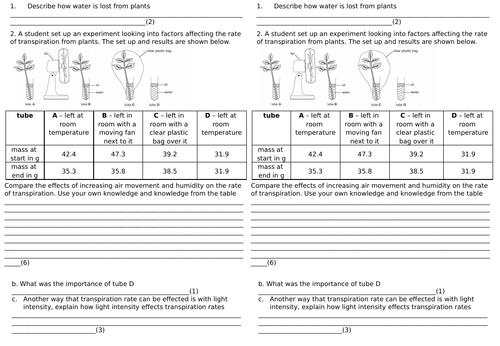 AQA GCSE Xylem, Phloem and Rate of Transpiration