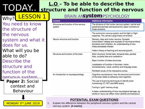 AQA GCSE [9-1] PSYCHOLOGY - BRAIN AND NEUROPSYCHOLOGY LESSONS