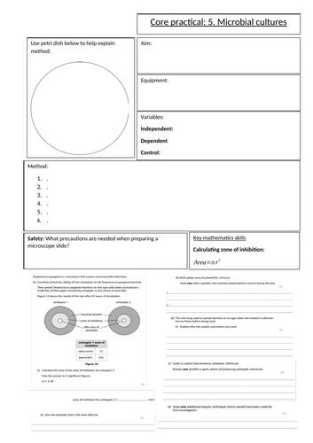 Biology GCSE Edexcel core practical 5 anti biotics overview sheet. Revision