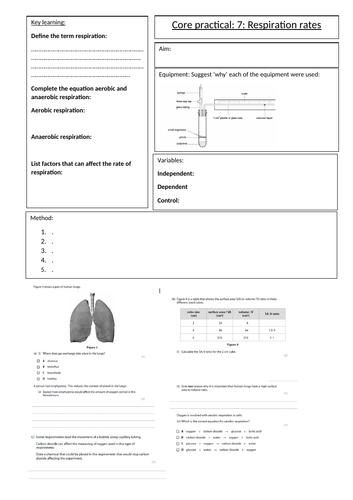 Biology GCSE Edexcel core practical 7 respiration rates overview sheet. Revision