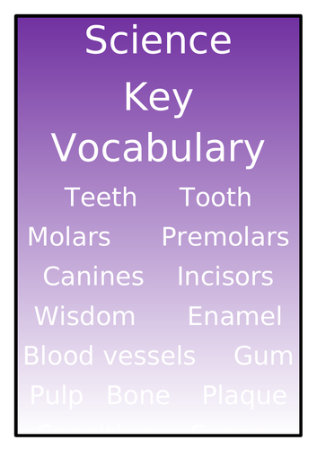 Key Vocabulary Posters for All Main Subjects
