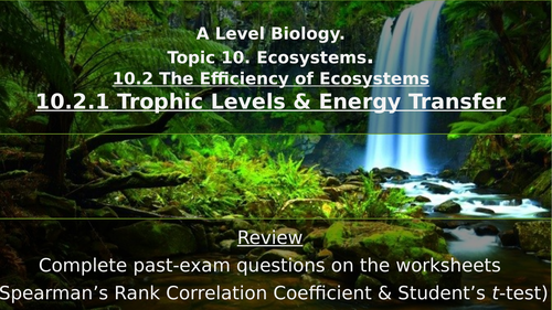 A Level Trophic Levels & Energy Transfers
