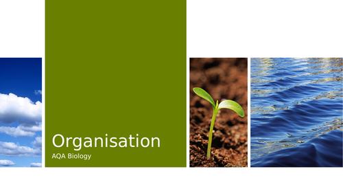 AQA Organisation Revision