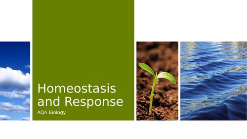 AQA Homeostasis and Response Revision