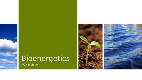 AQA Bioenergetics Revision