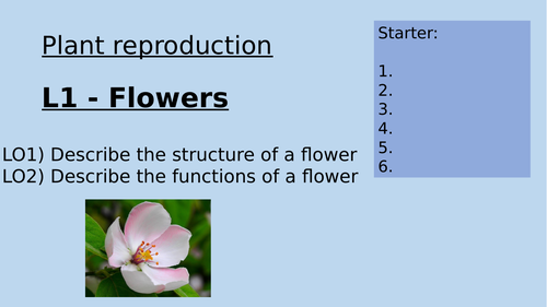 KS3 Plant Reproduction Lessons