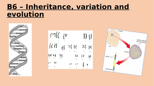9-1 AQA B6 Inheritance, variation, evolution