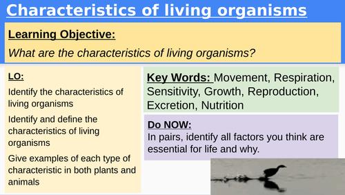CIE IGCSE Unit Classification & Characteristics of living things