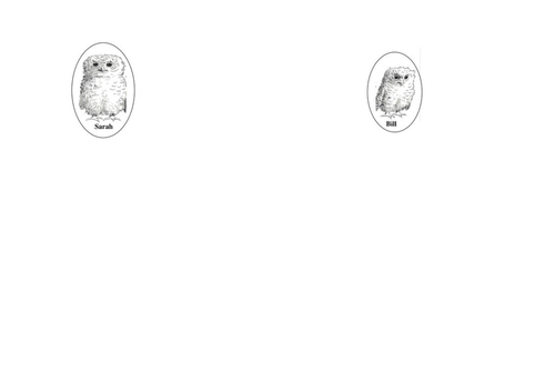 Owl Babies - story booklet