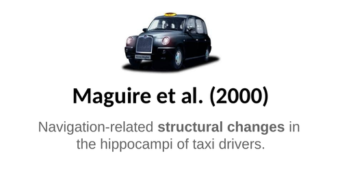 Maguire 'Taxi Driver' core study