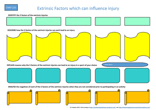 RO41 - Cambridge National - Extrinsic Factors Revision Resource