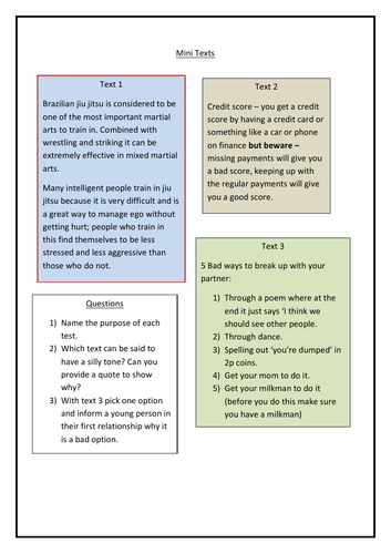 Mini text comprehension for functional skills