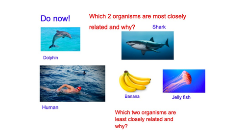 Taxonomy and classification 4.2.2 OCR Biology A