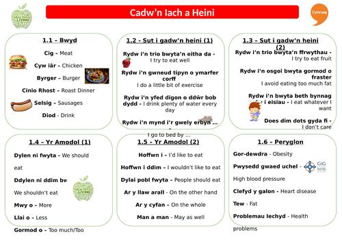 Revision Sheet - Cadw'n Iach a Heini - Taflen Adolygu