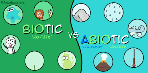 9-1 AQA GCSE Biology - U7 L2 Biotic and Abiotic Factors