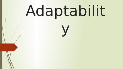 Adaptability Assembly
