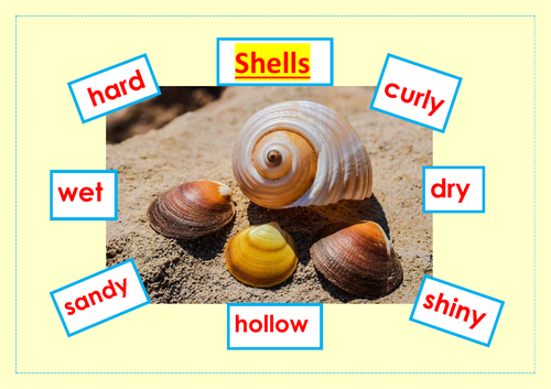 Shell words to read (8)