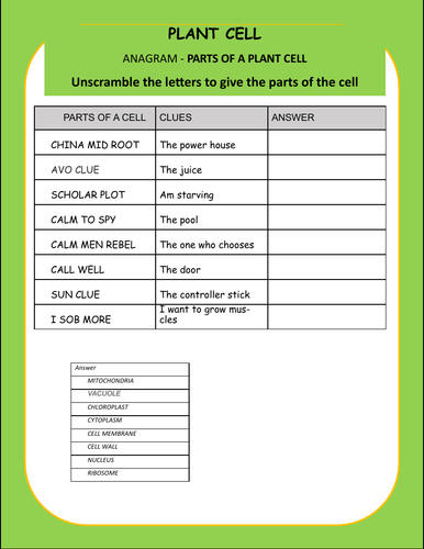 Plant Cell - Labelling - Anagram