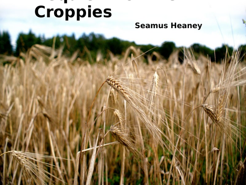 Requiem for the Croppies  by Seamus Heaney- Poetry Analysis (CCEA GCSE Conflict Poetry)