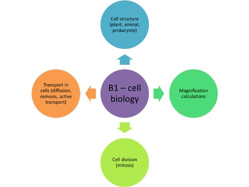 AQA Science (Biology) Trilogy revision mind maps