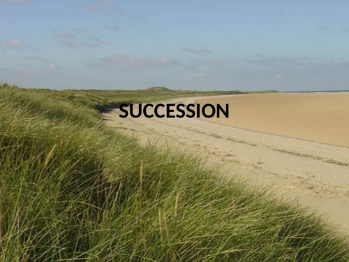 Presentation on succession using sand dunes as an example