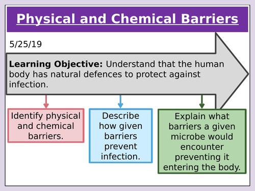 Physical and Chemical Barriers to infection by microorganisms. GCSE 9-1 Edexcel 5.12