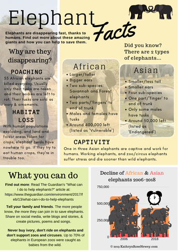 Elephants Facts poster - find out about elephants and how you can save them from extinction