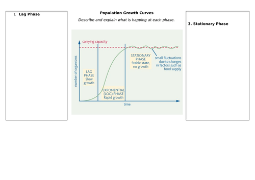 Population Size and Growth Curves
