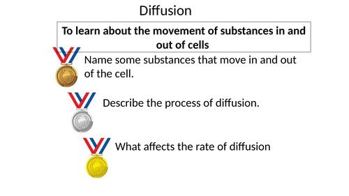 Diffusion GCSE, ELC, KS3, SEN