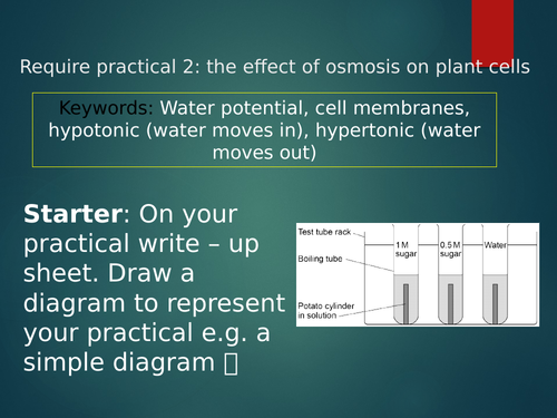 GCSE AQA REQUIRED PRACTICAL OSMOSIS