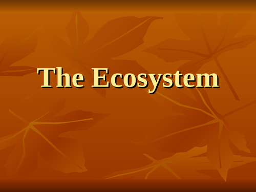 ECOSYSTEMS AND FOOD CHAIN